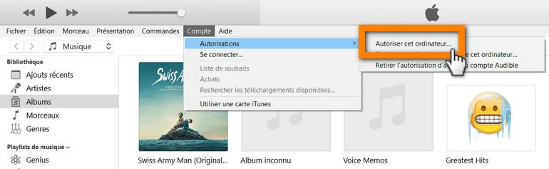 autoriser l'ordinateur dans l'iTunes erreur 42110